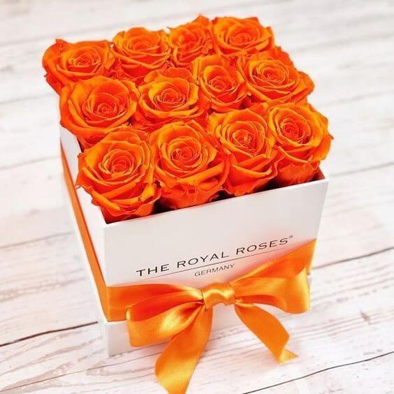caja-flores/020.jpg
