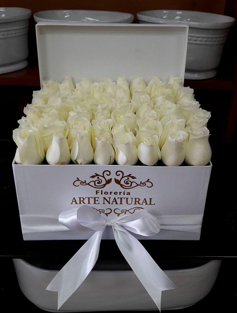 caja-flores/022.jpg