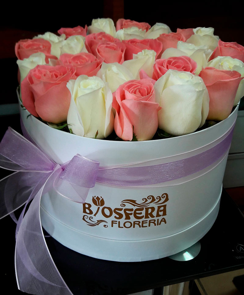 caja-flores/028.jpg