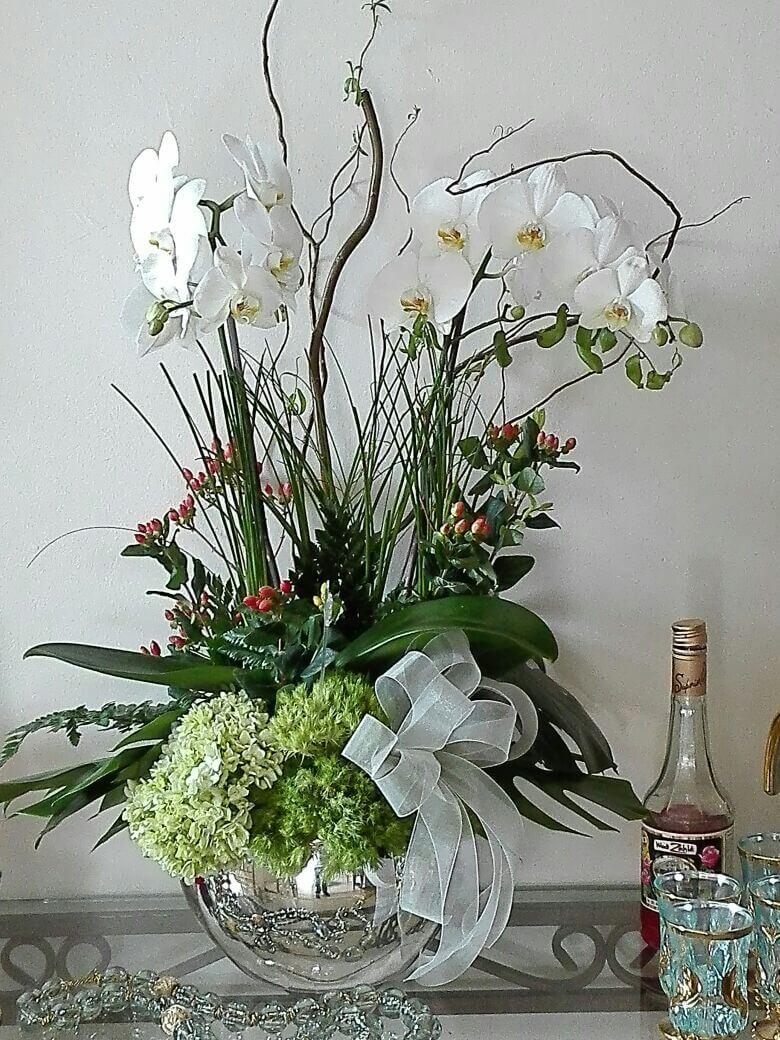 orquideas/004.jpg